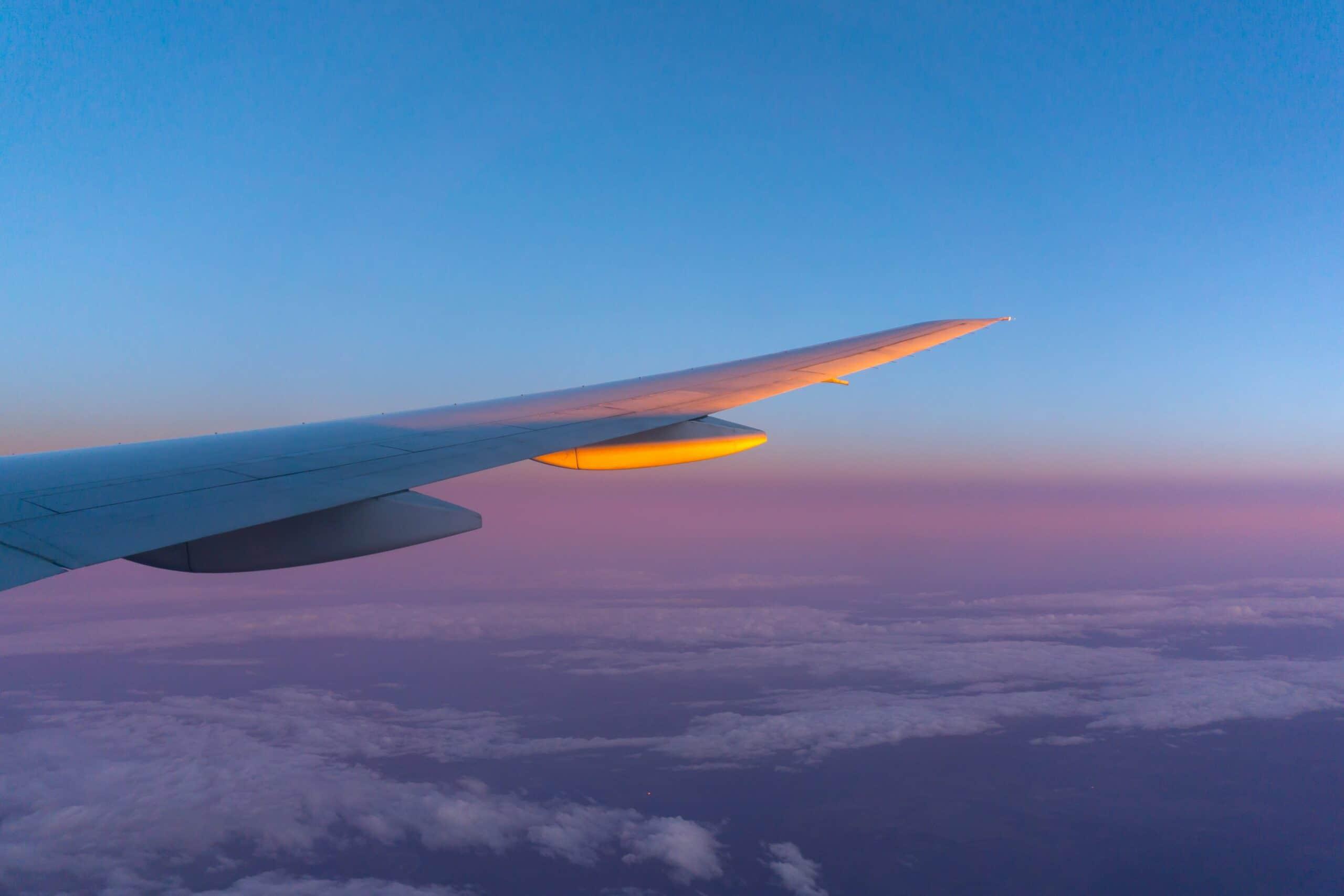 Immune, airplane flights, naturopathic treatment